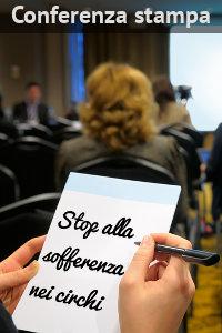 Copertina del video: Conferenza stampa 'Stop alla sofferenza nei circhi'