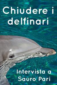 Copertina del video: Chiudere i delfinari