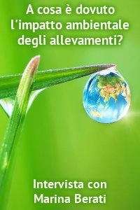 Copertina del video: A cosa è dovuto l'impatto ambientale degli allevamenti?