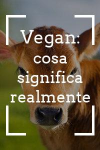 Copertina del video: Vegan: cosa significa realmente